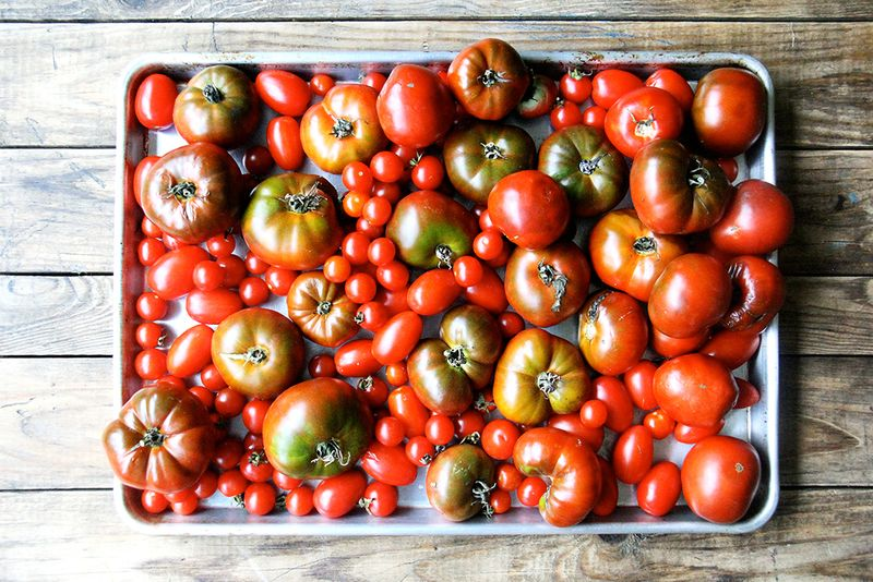 Turn an Overload of Tomatoes into Homemade Ketchup