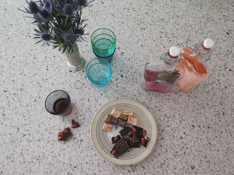 Chocolate and rhubarb sipping vodka with a side of thistles: remedy for a cold day.