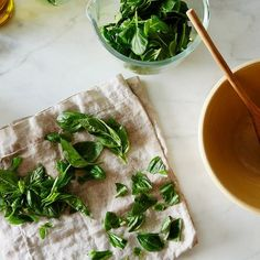 How to Stop Fresh Basil From Wilting (& Making You Miserable)