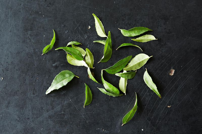 Madhur Jaffrey Told Me to Use My Curry Leaves, Pronto