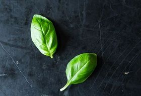 Basil: The Official Herb of Summer