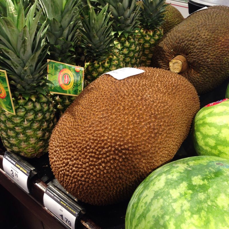 A very ripe jackfruit, spotted at my local grocery store