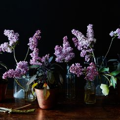 For Party-Friendly Centerpieces, Mix Flowers with Plants