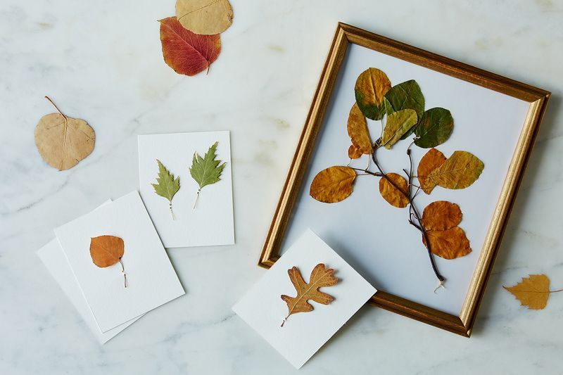 DIY stationery made with pressed leaves.