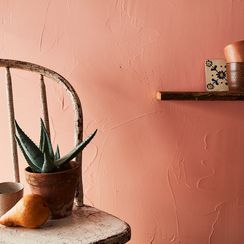 Thank Georgia O'Keeffe for Your Love of Cacti, Plaster, and Terra Cotta