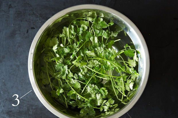 Cilantro: The Divisive Herb, from Food52
