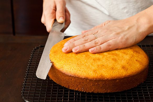 What Is The Best Knife To Cut Cake