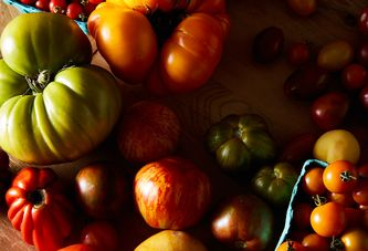 Reviving Lackluster Tomatoes Is as Easy as Turning on Your Oven