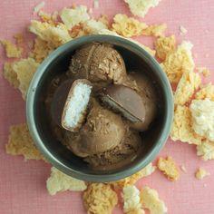 Chocolate Coconut Macaroon Ice Cream