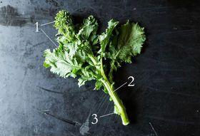 F2a7098f 0063 4874 a311 9731281ecdc6  broccolirabelead