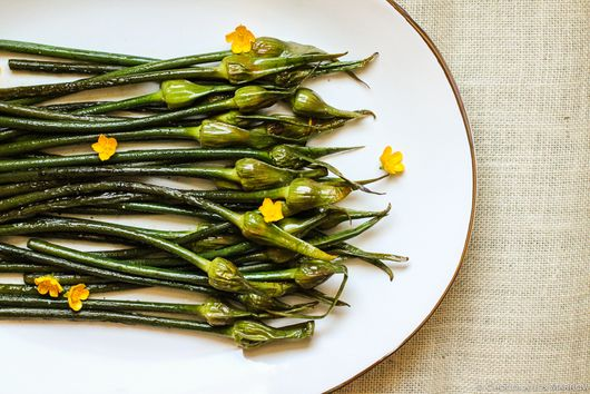 Savory Grilled Garlic Scapes