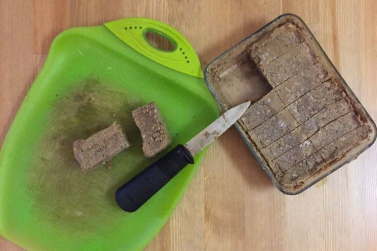 Raw Vegan Protein Bars