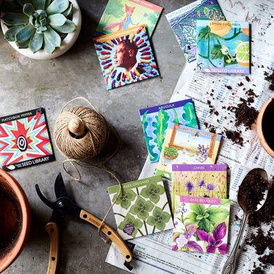Urban Gardener Seeds (Set of 10)