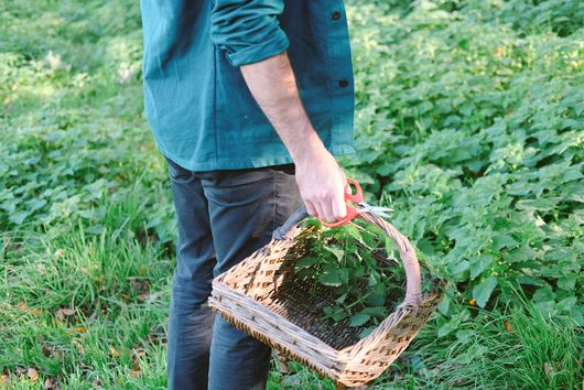 Foraging is a Way of Life in Cornwall...and You Can Get In on the Action