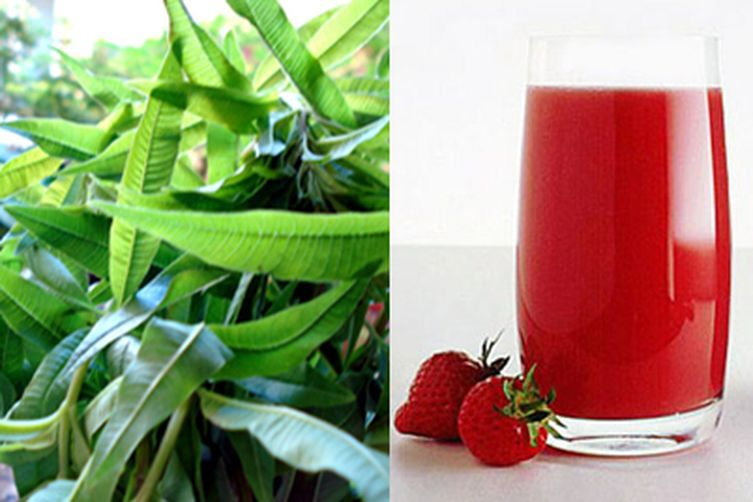 Strawberry and Lemon Verbena Summer Drink