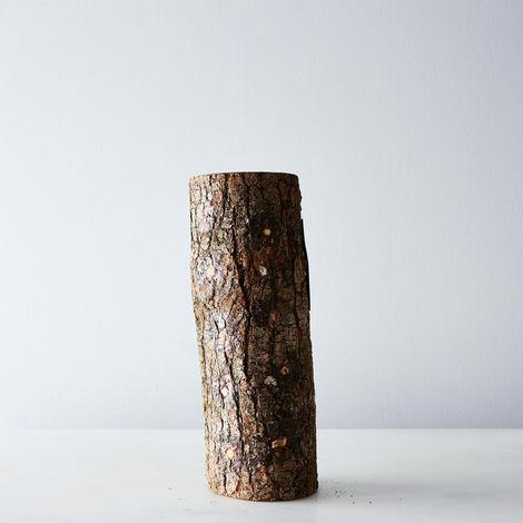 DIY Grow Your Own Mushroom Log