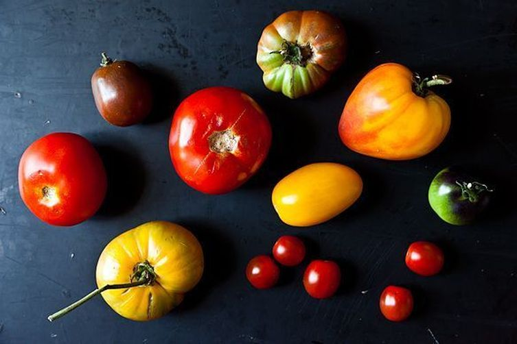 Expensive tomatoes