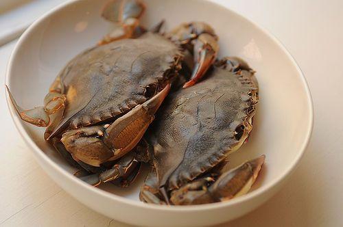 Peekytoe Crab Dip