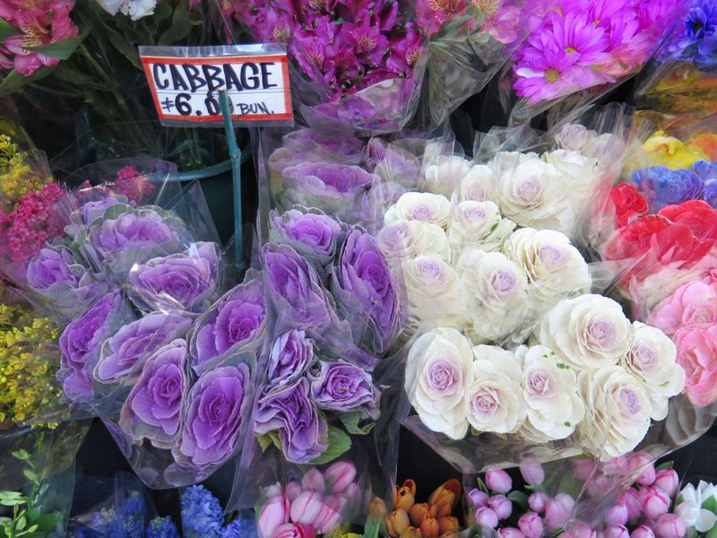 Ornamental cabbages have inherent volume, like roses or peonies, that makes them easy to arrange.