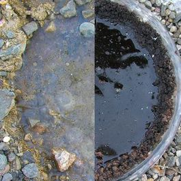 Frozen puddle in the middle of a pothole pie