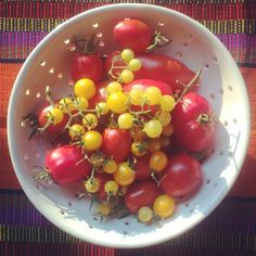 Late Summer Tomato Cobbler