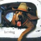 Barney Wrobel